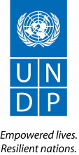 undp_eng.png