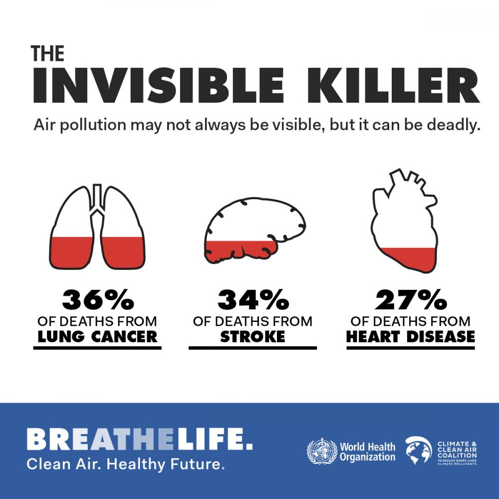infograph-breathelife-infographic1-hr.jpg